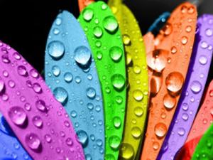 Acid Dyes Supplier